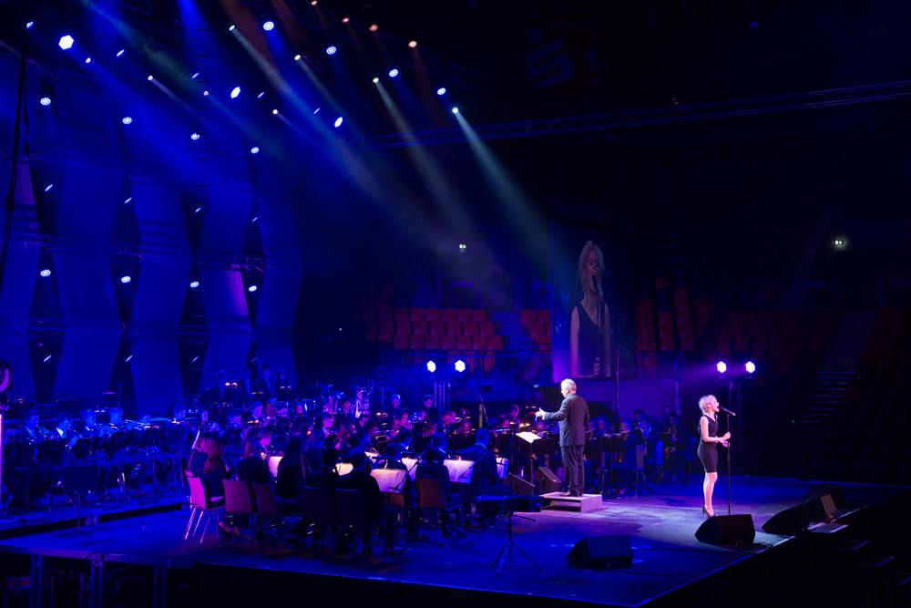 Gala der Stars 2013